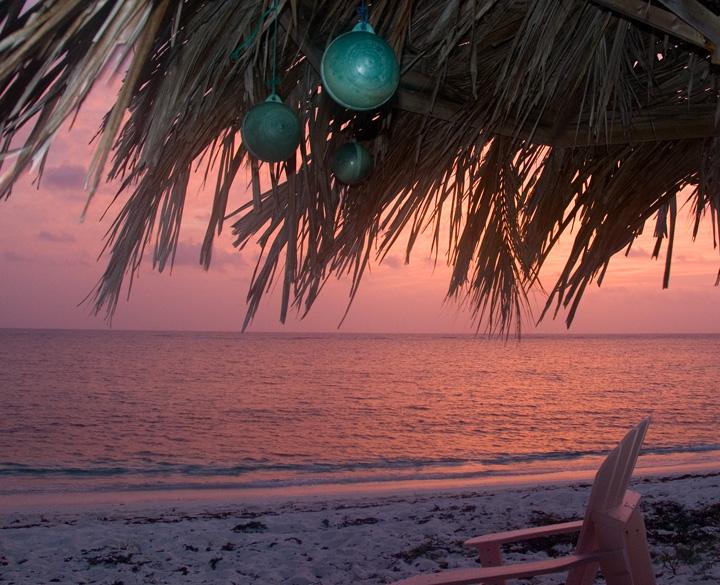 ngd-1-red-sunrise.jpg