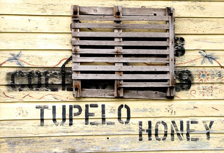 tupelo-honey.jpg
