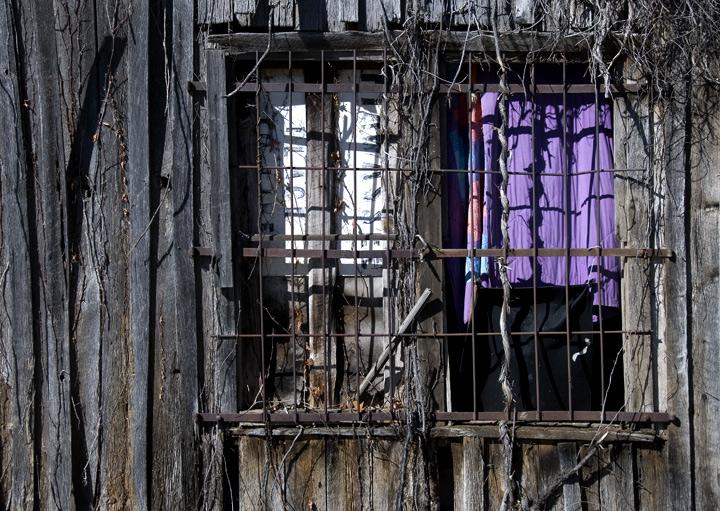 brasstown-dsc_1625-purple-q.jpg