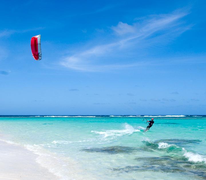 dsc_3204-red-kite.jpg