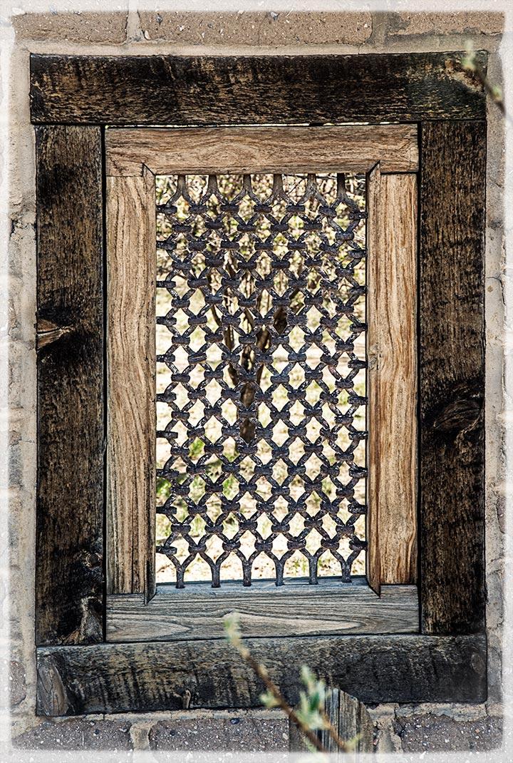 _DSC1000-tree-thru-the-window-ppe