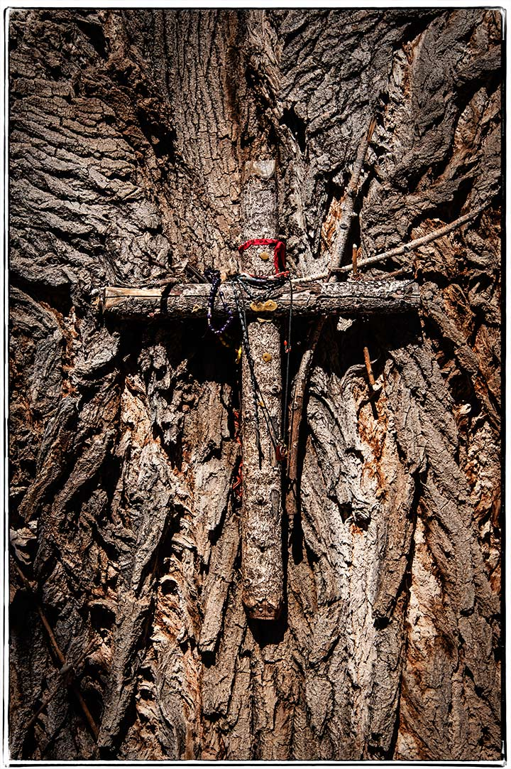 _DSC5627-tree-cross-at-chimayo