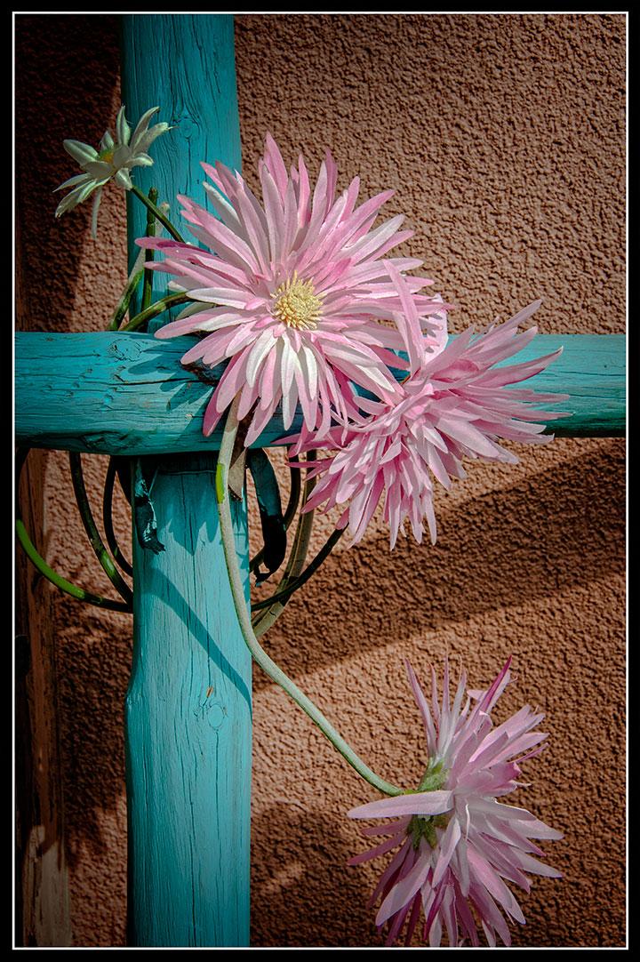 _DSC0554-ladder-flower