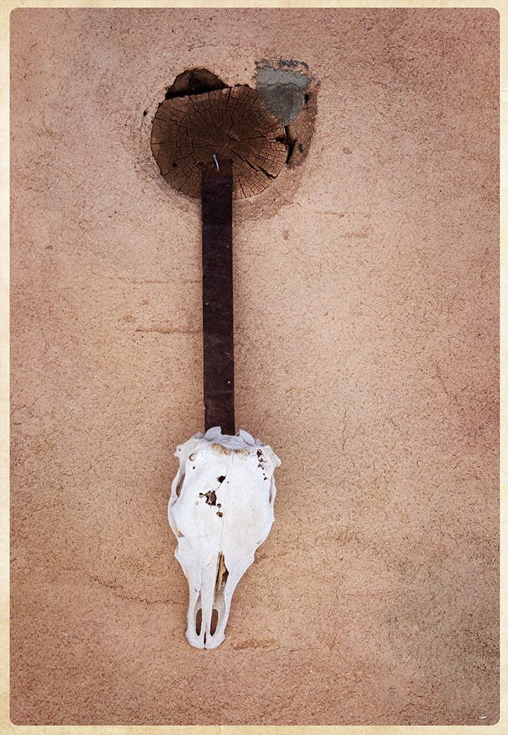 DSC_9938-hanging-skull
