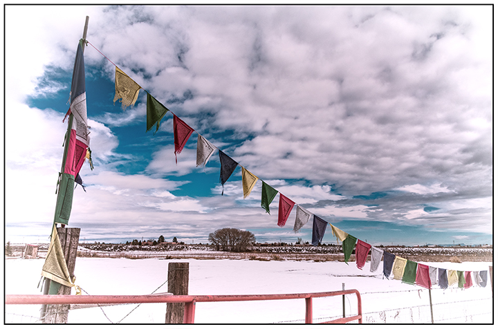 DSC_0367-prayer-flags