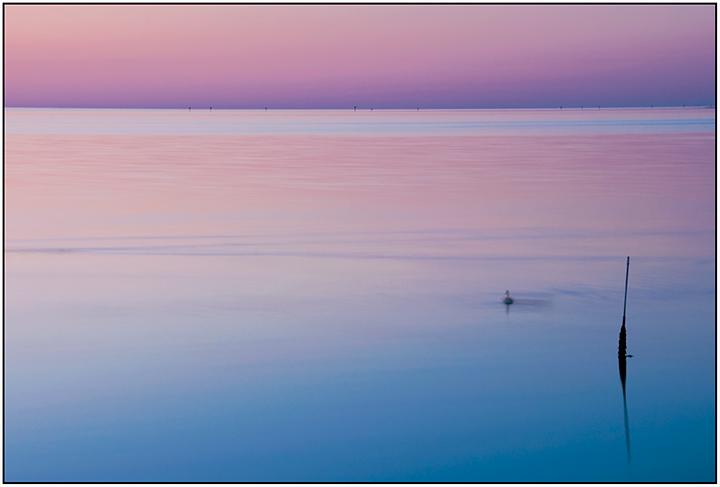 DSC_0674-purple-sea-redone-2016