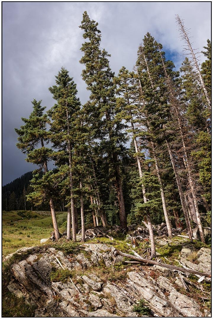 dsc_8682-riding-up-the-chair-lift-to-kachina-peak