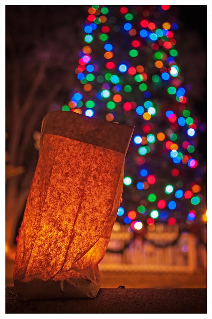 _dsc8412-plaza-christmas-tree